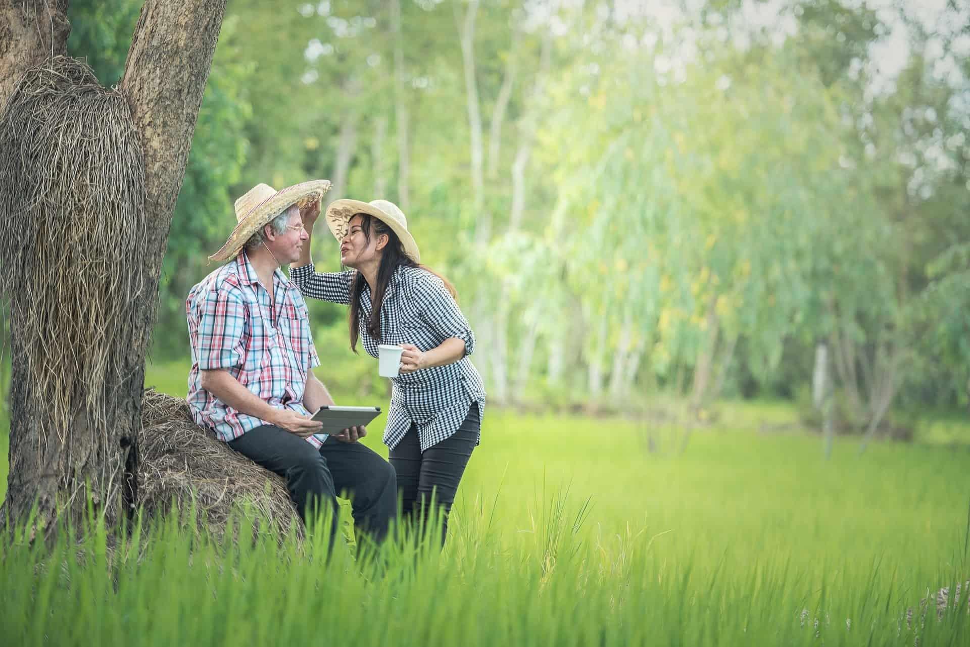 未来,夫婦,円満