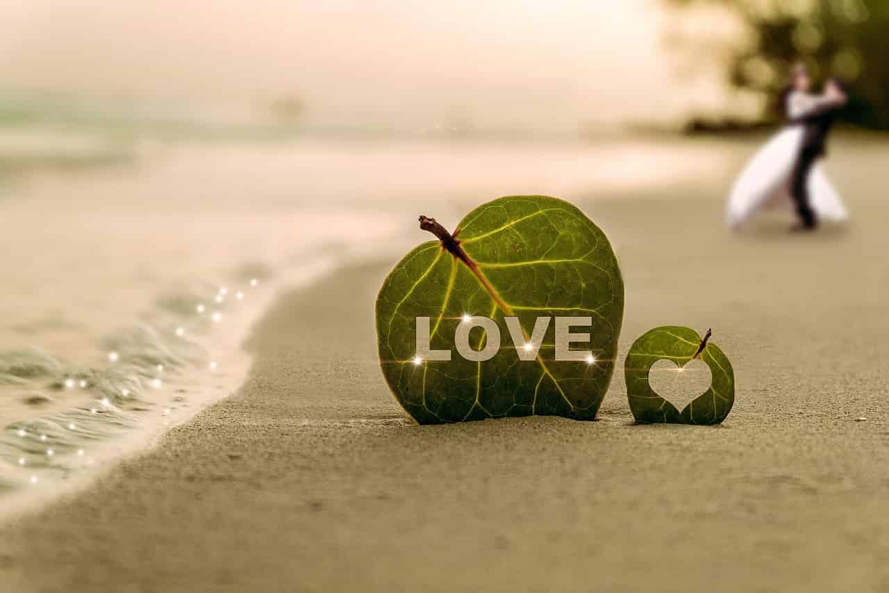 夫婦,愛,絆